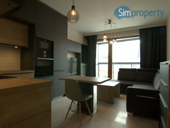 1 bedroom apartment in Warsaw City Center